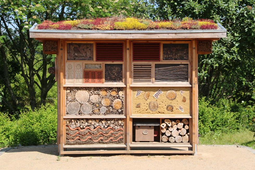 insect house 598354 gr